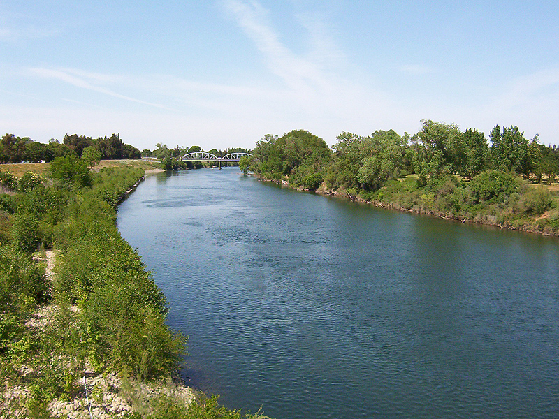 Sac_State_American_River_from_Guy_West_Bridge